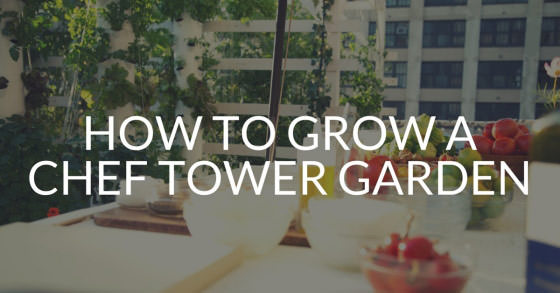 28 Plants to Grow for a Chef Tower Garden »
